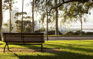 View of city from Kings Park at dawn